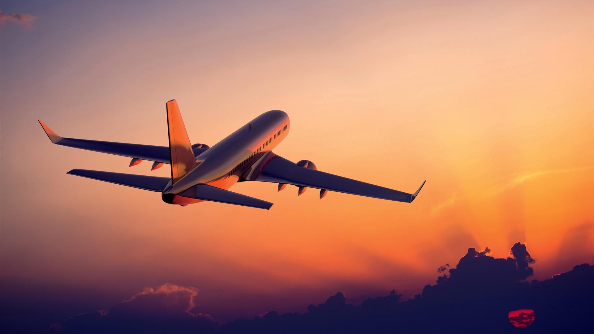 O Transporte de carga aérea não pára! Green Ibérica - Air cargo